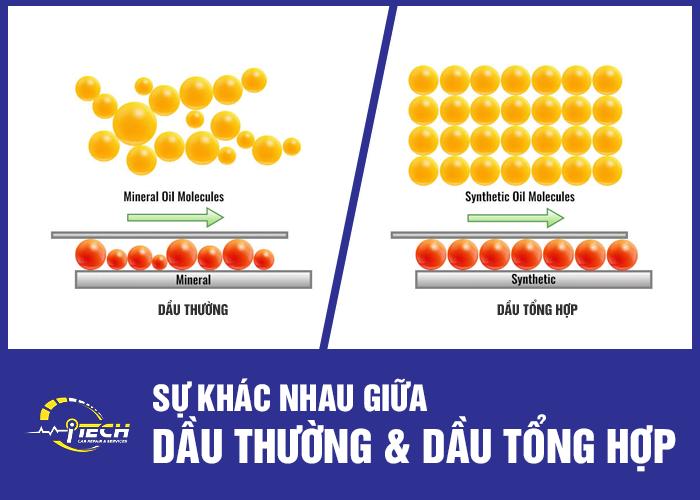 dau-tong-hop-vs-dau-thuong